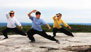 Exercise to Balance is Tai Chi