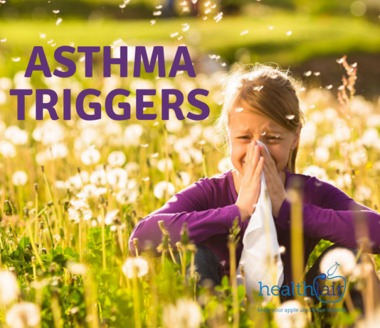 Asthma Triggers Causes Of Asthma Attacks