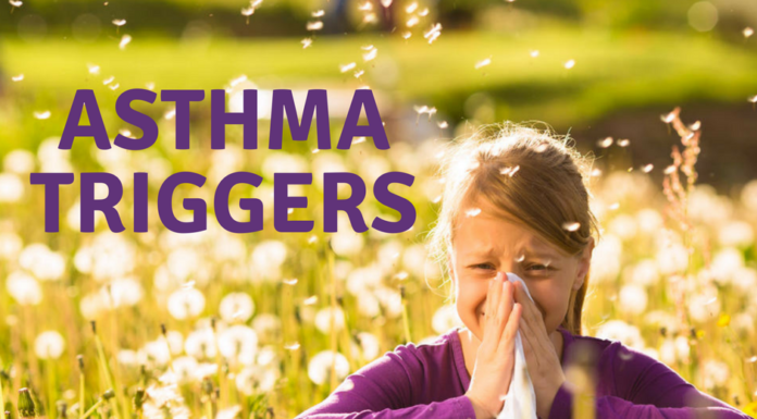 Asthma Triggers and Causes Of Asthma Attacks | HealthLair
