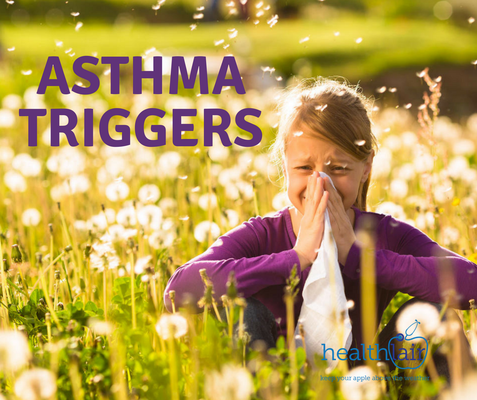 Asthma and its Triggers | Preserves Cotts Dales Future