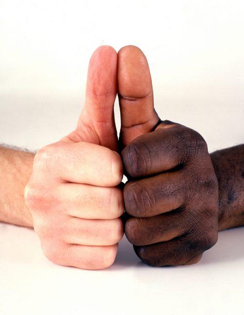 Racial Hostility